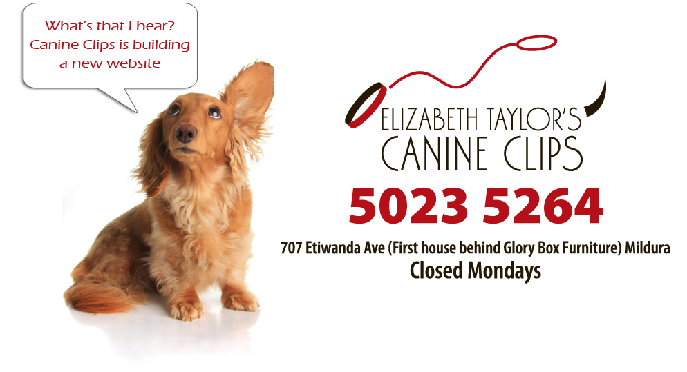 elizabeth taylors canine clips